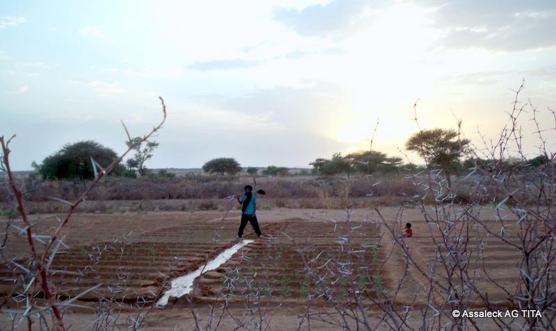 Un jardinier et son fils à Intikoi  (Kidal)